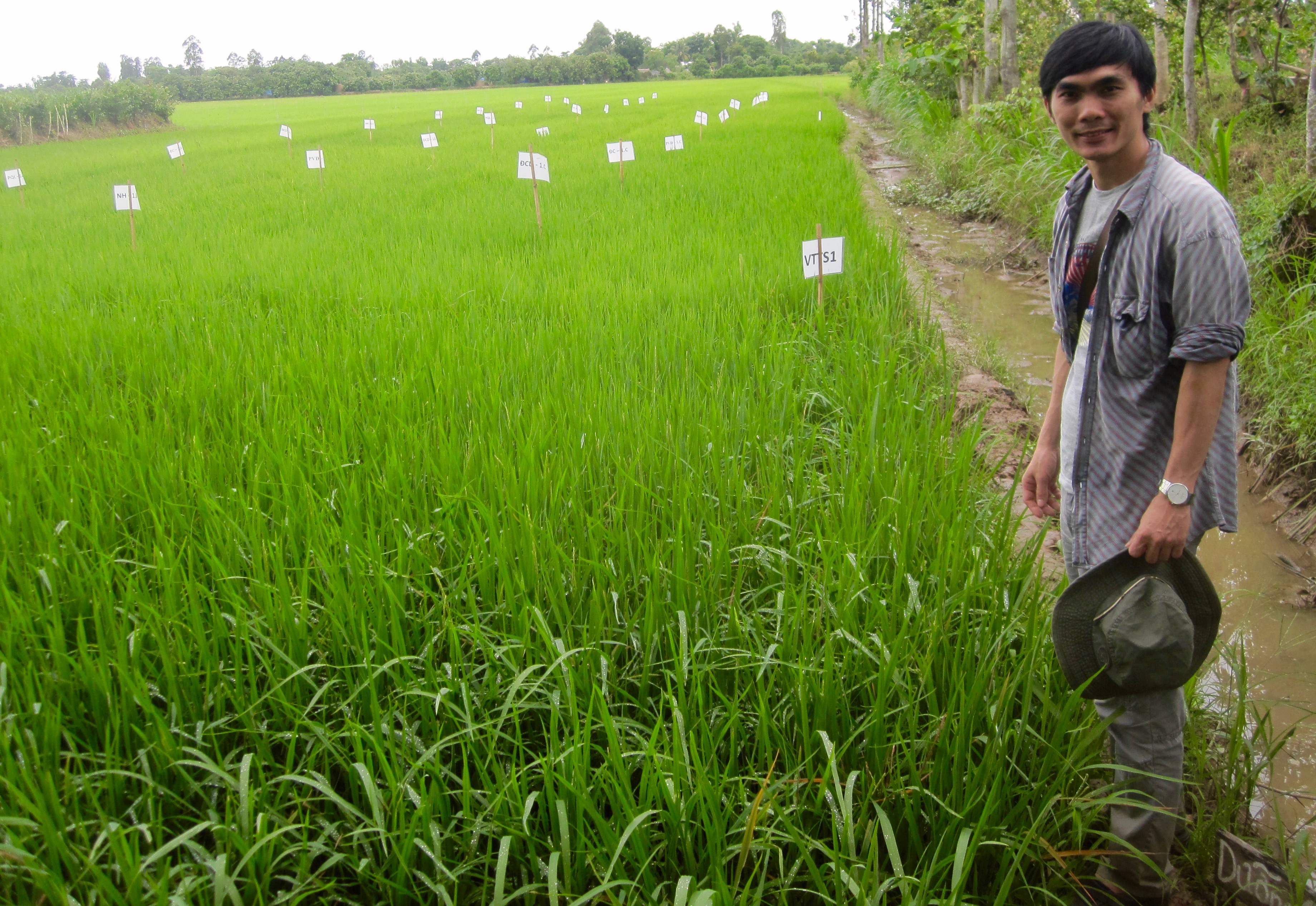 The bio control methods to prevent the wide spread rice disease x are applicable in any tropical developing country in Asia, Africa or Latin America.